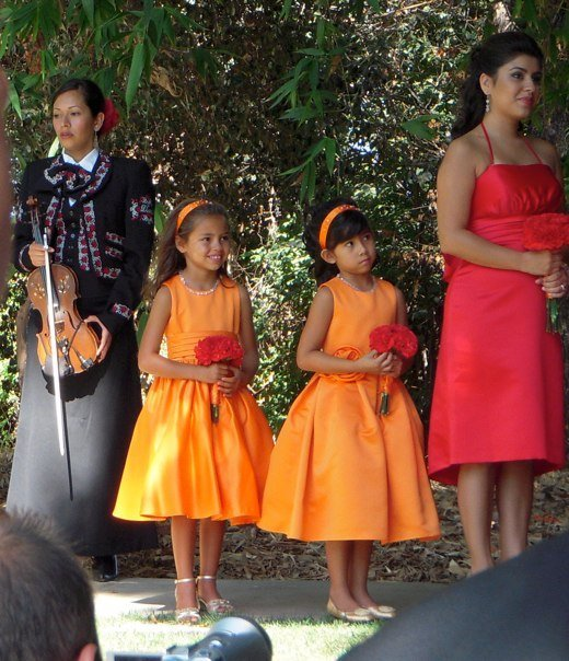 Flowers & Decor, orange, Flower, Girl, Jr, Bridesmadi