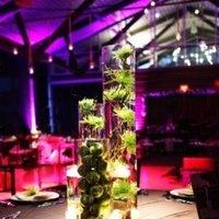 Reception, Flowers & Decor, pink, purple, green, black