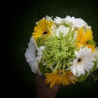 Flowers & Decor, Bridesmaids, Bridesmaids Dresses, Fashion, white, yellow, green, Bride Bouquets, Bridesmaid Bouquets, Flowers, Bouquet, Flower Wedding Dresses