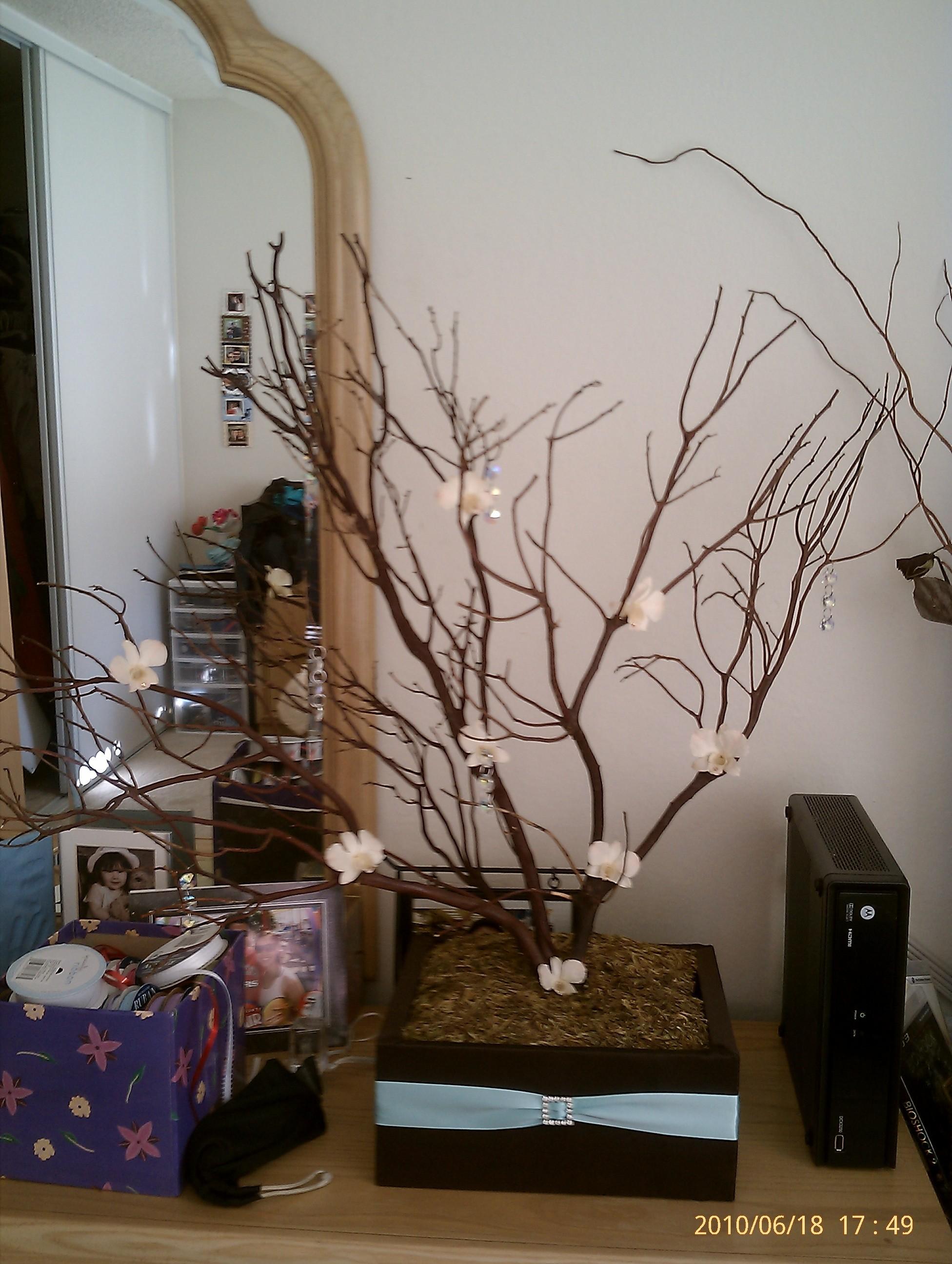blue, brown, Tree, Tiffany, Manzanita, Wish