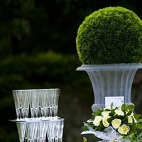 Reception, Flowers & Decor, Registry, white, green, Drinkware, Flowers, Roses, Flower, Glasses