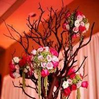 Reception, Flowers & Decor, pink, Centerpieces, Centerpiece, Branch