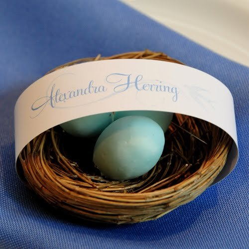 Reception, Flowers & Decor, Favors & Gifts, blue, brown, favor, Party, Birds, Nest, Card, Place