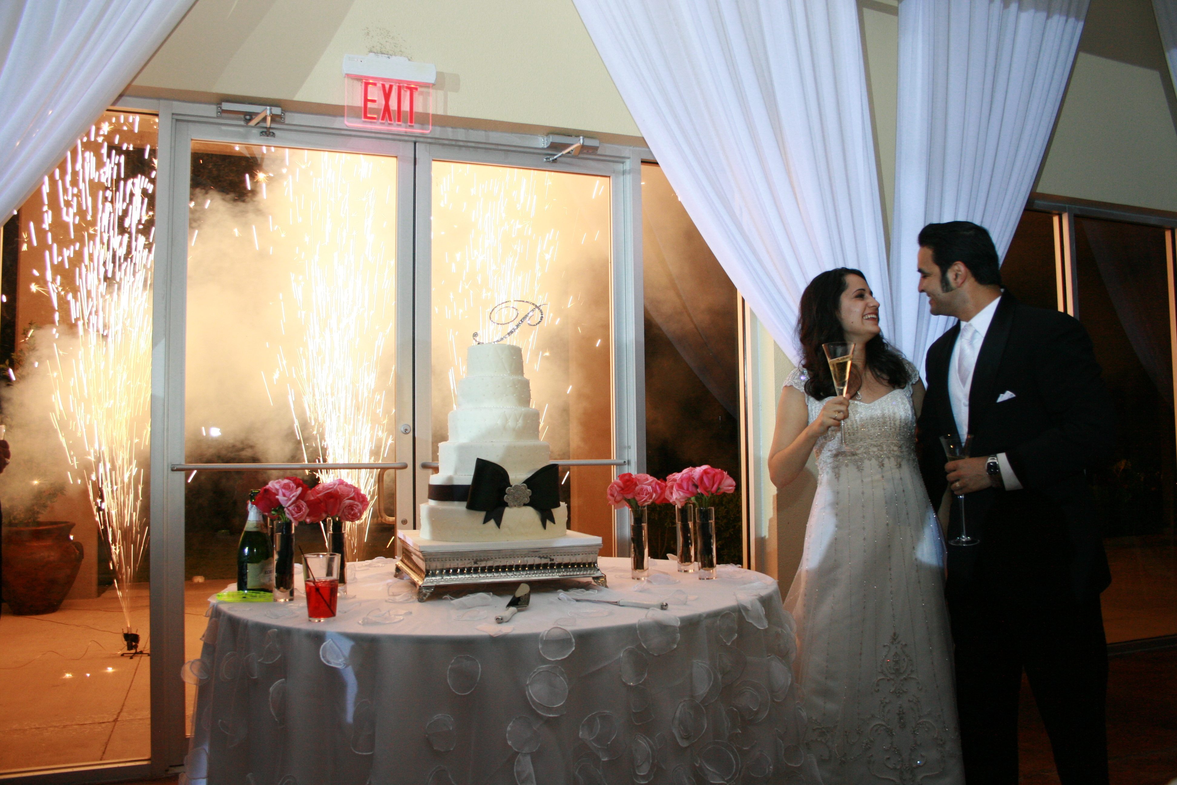 Reception, Flowers & Decor, Wedding Dresses, Cakes, Fashion, white, black, silver, cake, dress, And, Cutting, Fireworks
