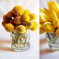 Flowers & Decor, white, yellow, green, Centerpieces, Flowers, Centerpiece, Tulips, Billy balls
