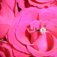 Jewelry, pink, Engagement Rings, Ring, Engagement, My