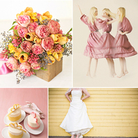 Inspiration, yellow, pink, silver, Board