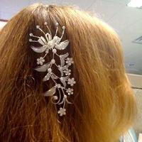 Beauty, silver, Hair