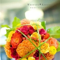 Flowers & Decor, yellow, orange, pink, Flowers, Flower