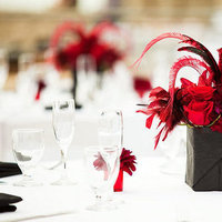Beauty, Flowers & Decor, red, black, Feathers, Centerpieces, Flowers, Centerpiece
