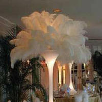 Beauty, Reception, Flowers & Decor, Feathers, Centerpieces, Glam, Centerpiece, Tablescape, Ostrich