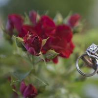 Jewelry, Princess Cut Engagement Ring, Wedding, Ring, Band, Princess, Cut, Halo