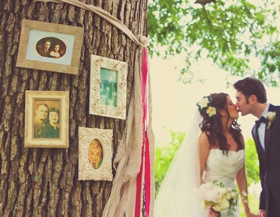Ceremony, Reception, Flowers & Decor, Tree, Frame