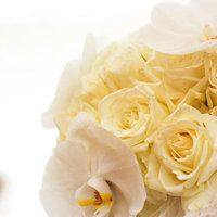 Beauty, white, Feathers, Roses, Bouquet, Orchids