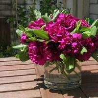 Reception, Flowers & Decor, pink, purple, Centerpieces, Flowers, Centerpiece