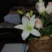 Reception, Flowers & Decor, white, blue, brown, Rustic, Flowers, Rustic Wedding Flowers & Decor