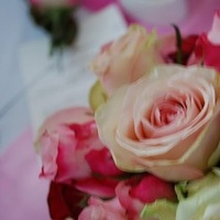 Flowers & Decor, white, yellow, pink, red, purple, Flowers