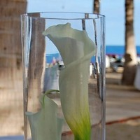 Reception, Flowers & Decor, Beach, Centerpieces, Beach Wedding Flowers & Decor, Centerpiece