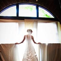 Ceremony, Flowers & Decor, Wedding Dresses, Veils, Fashion, white, silver, dress, Bride, Veil, Alfred, Angelo
