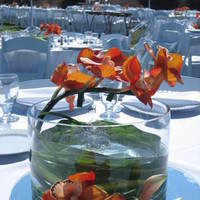 Reception, Flowers & Decor, orange, green, Flowers, Inspiration board