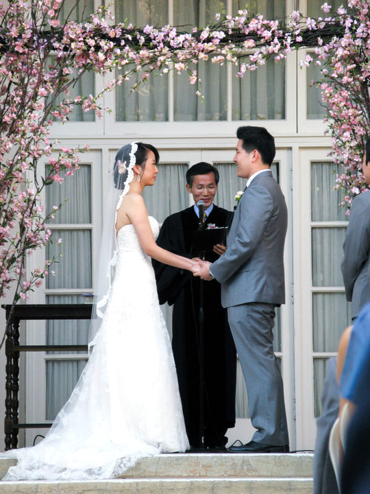 Ceremony, Flowers & Decor, Wedding Dresses, Veils, Fashion, pink, dress, Men's Formal Wear, Ceremony Flowers, Outdoor, Flowers, Veil, Grey, Blossom, Cherry, Suit, Mantilla, Flower Wedding Dresses