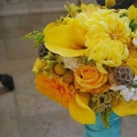 Flowers & Decor, white, yellow, Flowers