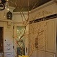 Flowers & Decor, white, yellow, Centerpieces, Flowers, Centerpiece, Manzanita