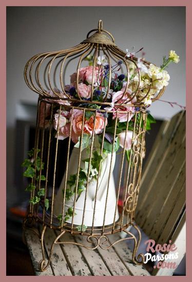 Cage, Bird