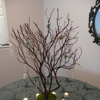 green, gold, Crystal, Manzanita, Crystal tree