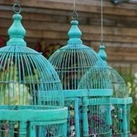 Reception, Flowers & Decor, blue, Cage, Bird, Teal, Inspiration board