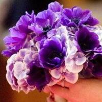 Ceremony, Flowers & Decor, purple, Ceremony Flowers, Bride Bouquets, Flowers, Bouquet