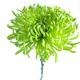 1375099635 small thumb 11533c3fa2f40960968e31e8ee1ab2f9