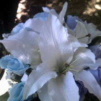 Flowers & Decor, Bride Bouquets, Flowers, Bouquet, My