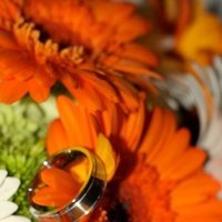 Flowers & Decor, Jewelry, white, yellow, orange, Flowers, Rings