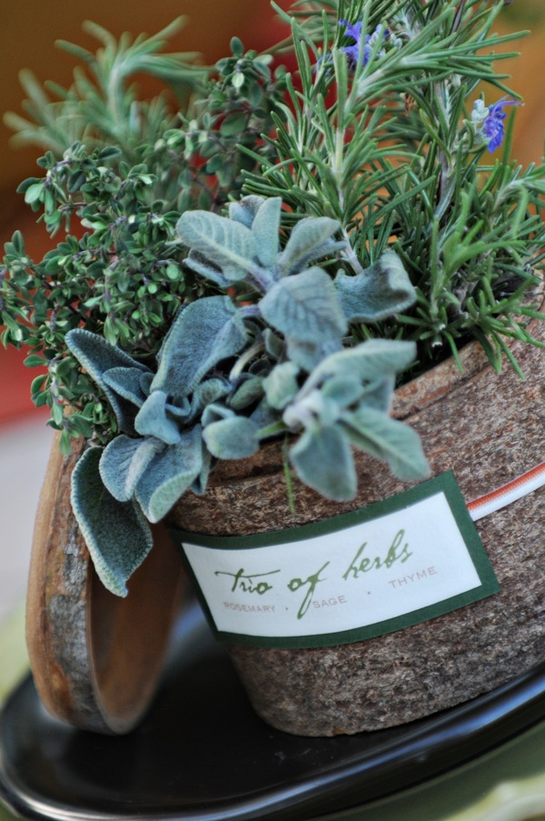 Favors & Gifts, Favors, Herbs