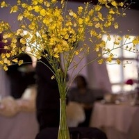 Reception, Flowers & Decor, yellow, Centerpieces, Flowers, Centerpiece, Floral