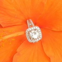 Jewelry, orange, Engagement Rings, Ring