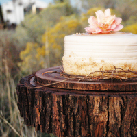 Ceremony, Flowers & Decor, Cakes, brown, cake, Rustic, Rustic Wedding Flowers & Decor, Tree, Topper, Stand, Inspiration board, Wood, Slice