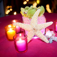 Reception, Flowers & Decor, pink, Centerpieces, Centerpiece, Orchid, Starfish, Light, Led