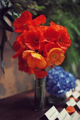 orange, purple, Halloween, Contemporary, Whimsical, Vibrant, Liz taman