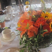 Flowers & Decor, yellow, orange, red, green, brown, Flowers
