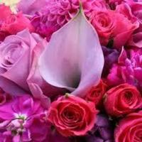 Flowers, pink, purple, red, Flowers & Decor