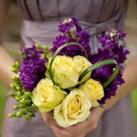 Flowers & Decor, yellow, purple, Flowers