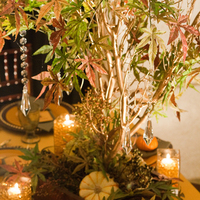 Ceremony, Reception, Flowers & Decor, yellow, orange, red, green, brown, gold, Ceremony Flowers, Centerpieces, Flowers, Fall Wedding Flowers & Decor, Centerpiece, Wedding, Manzanita, Autumn, Crystals, Pumpkins