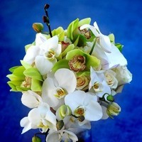 Flowers & Decor, white, yellow, green, Bride Bouquets, Flowers, Bouquet, Orchid, Bridal, Cymbidium, Phalaenopsis
