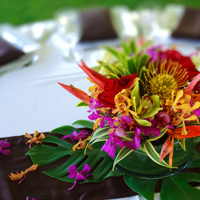 Flowers & Decor, orange, red, purple, green, brown, Flowers