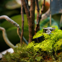 Ceremony, Reception, Flowers & Decor, blue, green, brown, black, Rings, Inspiration board, Moss, Woods