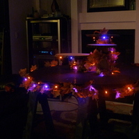 Reception, Flowers & Decor, orange, purple, Cupcake, Cupcake stand