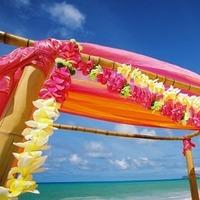Reception, Flowers & Decor, white, yellow, orange, pink, purple, Inspiration board