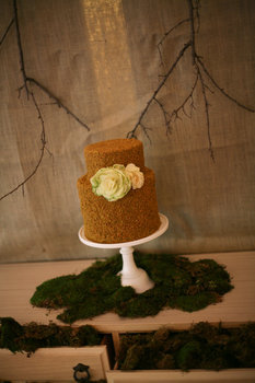 Reception, Flowers & Decor, Cakes, green, brown, cake, Cookies, Table, Inspiration board, Moss, Sweets